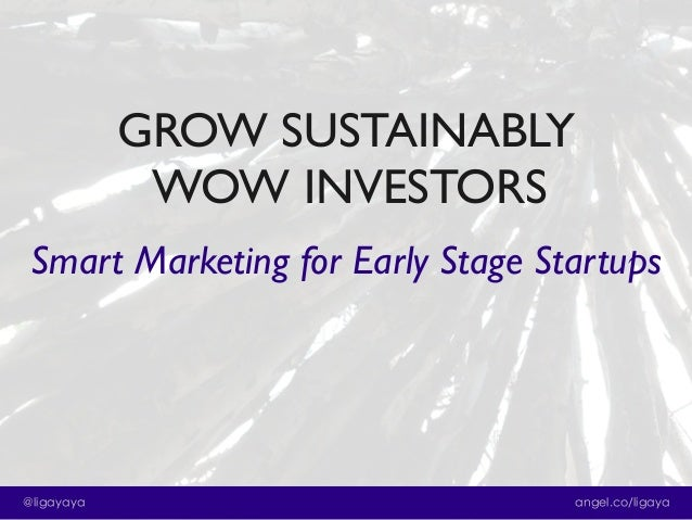 Grow Sustainably and Wow Investors: Smart Marketing for Early Stage Startups