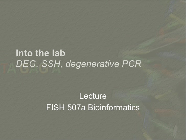 Into the lab DEG, SSH, degenerative PCR                 Lecture       FISH 507a Bioinformatics