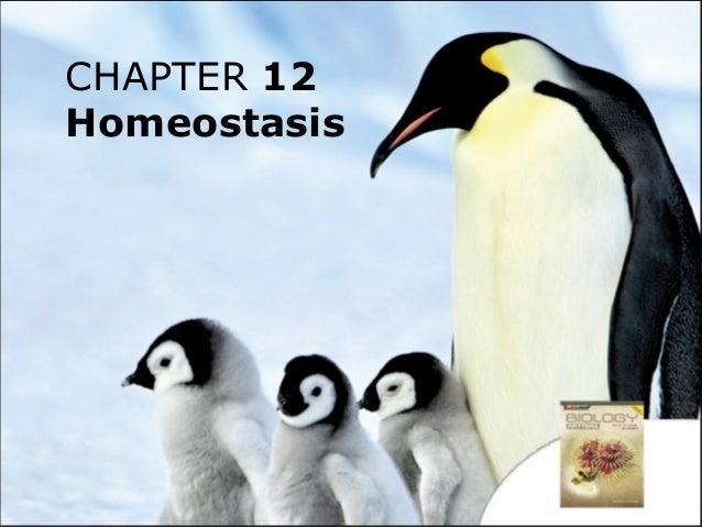 CHAPTER 12 Homeostasis