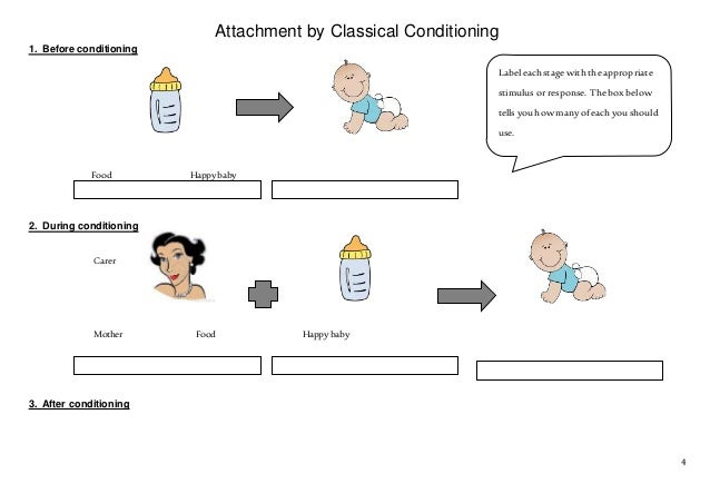 classical conditioning and monkey Chapter preview learning helps us adapt to our environment pavlov explored classical conditioning, in which we learn to anticipate events, such as being fed or.