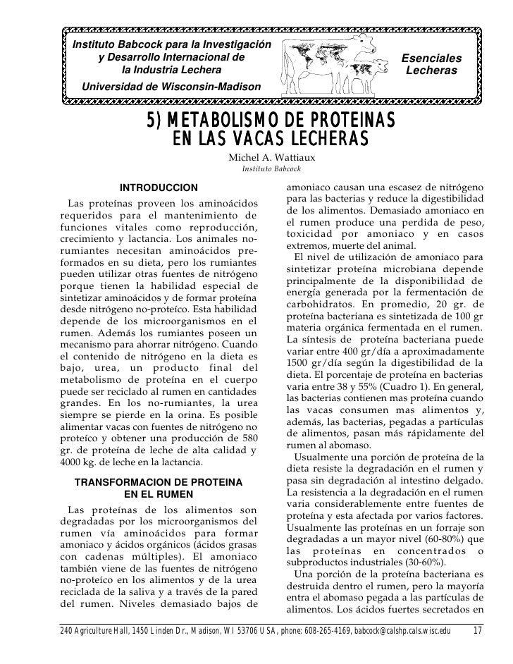 50 metabolismo de las proteinas