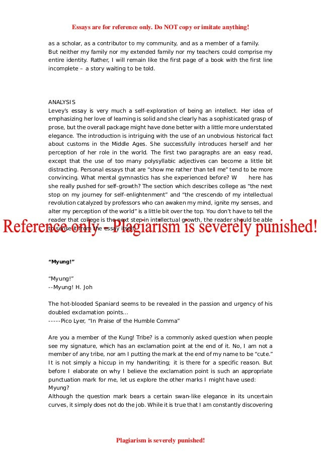 my english class essay