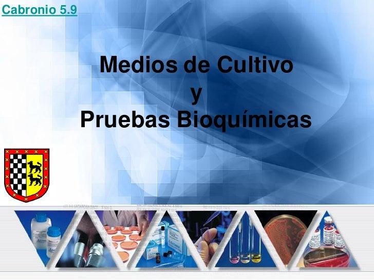 Cabronio 5.9                    Medios de Cultivo                         y                Pruebas Bioquímicas