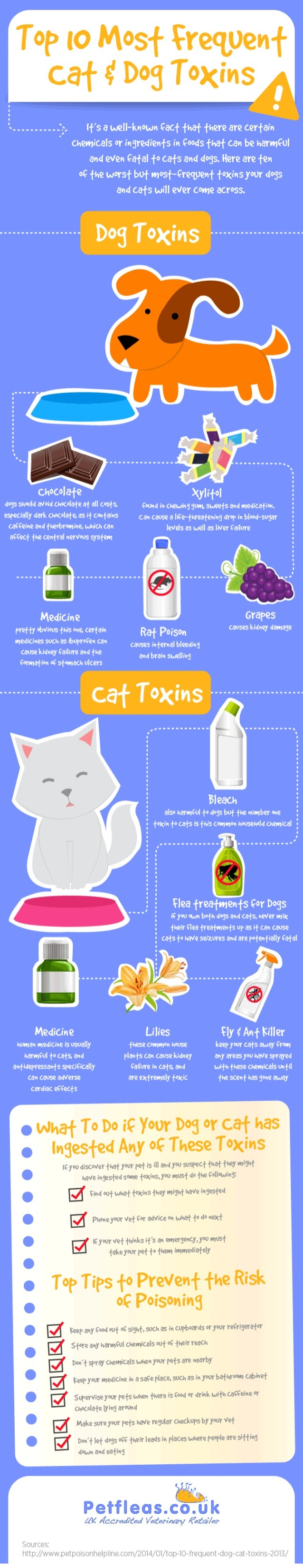 Top 10 Most Frequent Cat and Dog Toxins