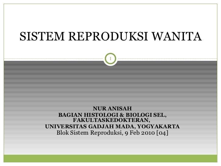 systema-genitalia-feminina