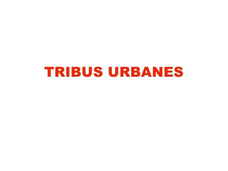 TRIBUS URBANES