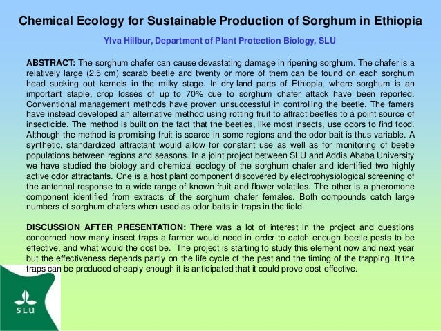 Chemical Ecology for Sustainable Production of Sorghum in Ethiopia Ylva Hillbur, Department of Plant Protection Biology, S...