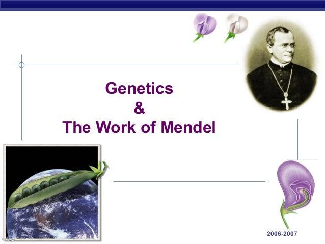 Genetics                     &             The Work of MendelAP Biology                        2006-2007