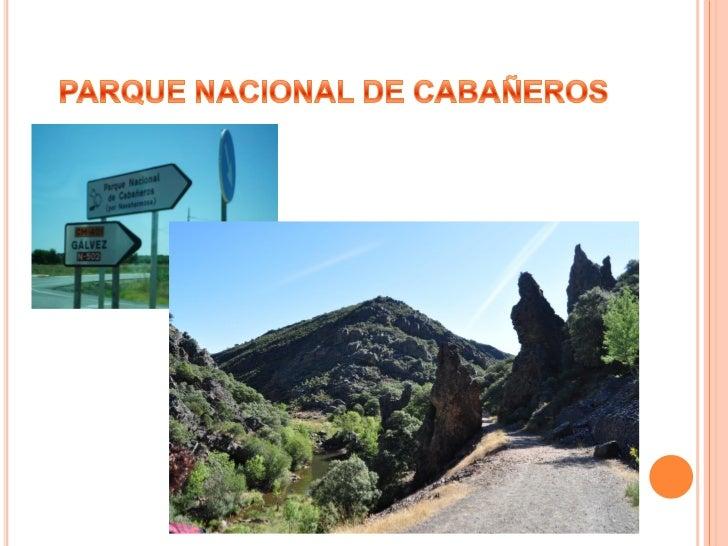 PRIMER DIA HORCAJO DELOS MONTESNos alojamos en el hotel Parque de Cabañeros, situadoen una zona privilegiada de los montes...