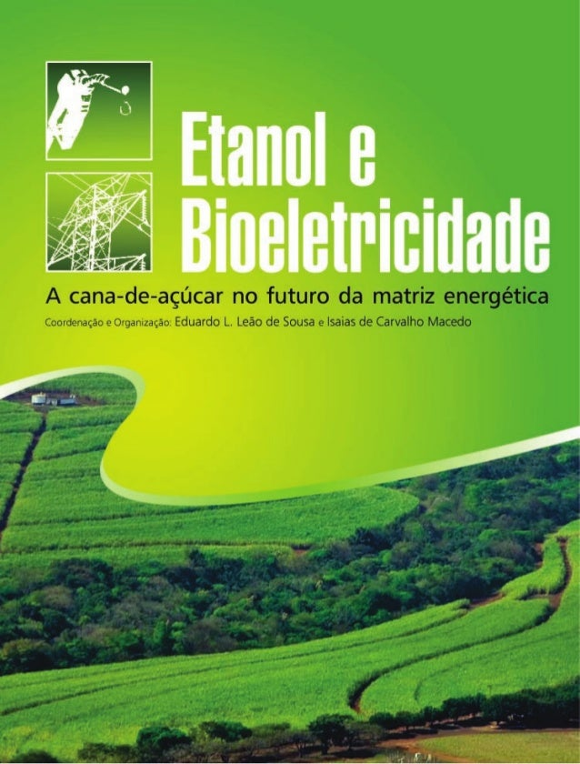 Dados Internacionais de Catalogação na Publicação (CIP) (Câmara Brasileira do Livro, SP, Brasil) Etanol e bioeletricidade ...