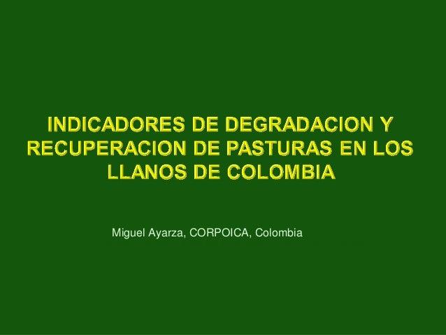 Miguel Ayarza, Red de Forrajes, COPOICA, Colombia Miguel Ayarza, CORPOICA, Colombia