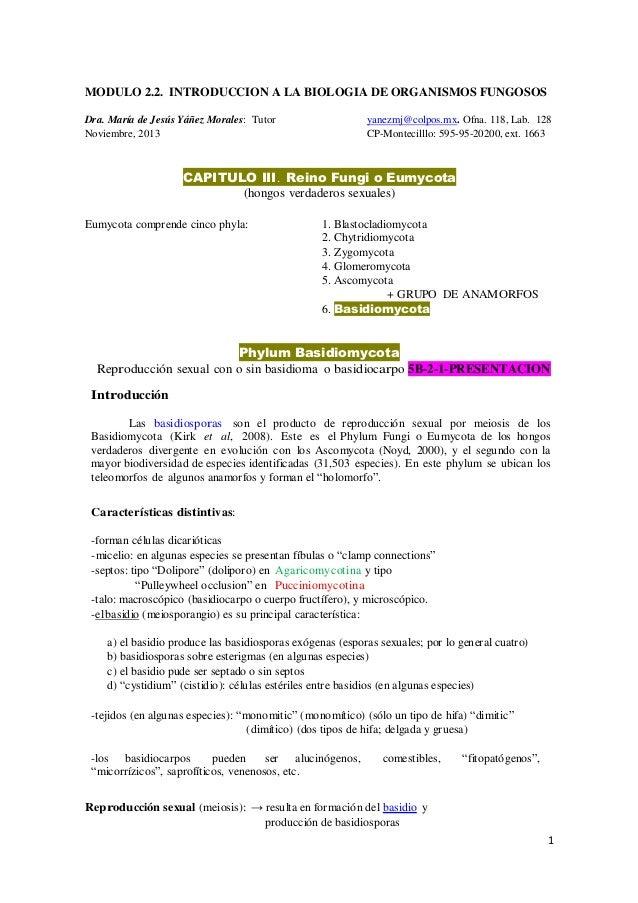 MODULO 2.2. INTRODUCCION A LA BIOLOGIA DE ORGANISMOS FUNGOSOS Dra. María de Jesús Yáñez Morales: Tutor Noviembre, 2013  ya...