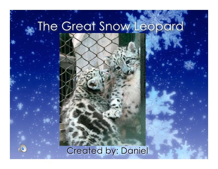 The Great Snow Leopard         Created by: Daniel