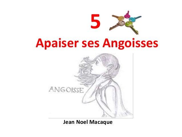 5 Apaiser ses Angoisses Jean Noel Macaque