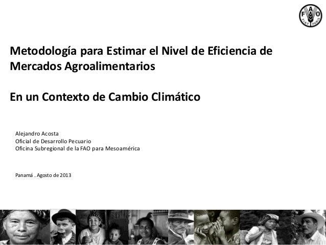 Metodología para Estimar el Nivel de Eficiencia de Mercados Agroalimentarios En un Contexto de Cambio Climático Alejandro ...