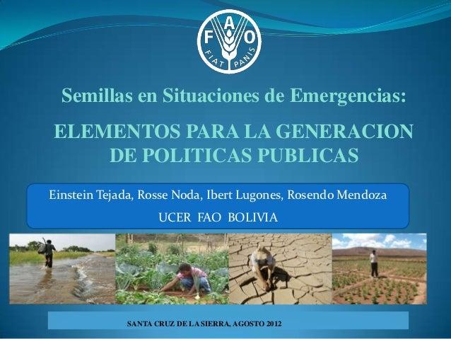 Semillas en Situaciones de Emergencias:ELEMENTOS PARA LA GENERACION    DE POLITICAS PUBLICASEinstein Tejada, Rosse Noda, I...