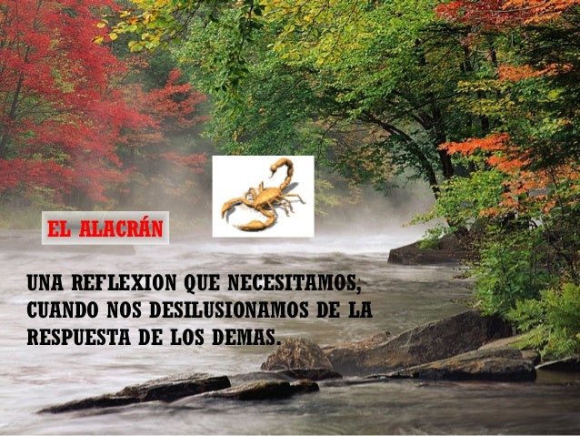 EL ALACRÁNUNA REFLEXION QUE NECESITAMOS,CUANDO NOS DESILUSIONAMOS DE LARESPUESTA DE LOS DEMAS.