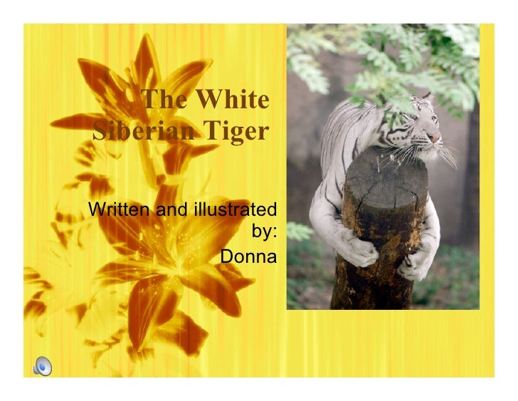 The White Siberian Tiger  Written and illustrated                     by:                 Donna