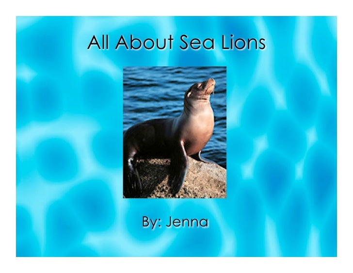 All About Sea Lions          By: Jenna