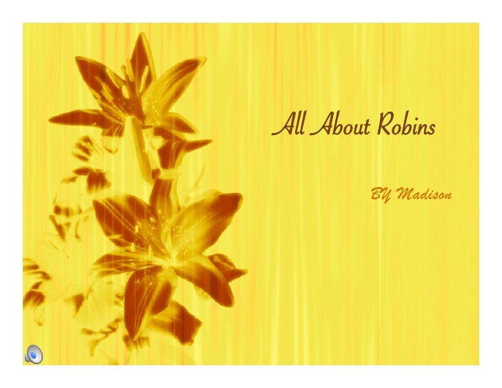 All About Robins          BY Madison