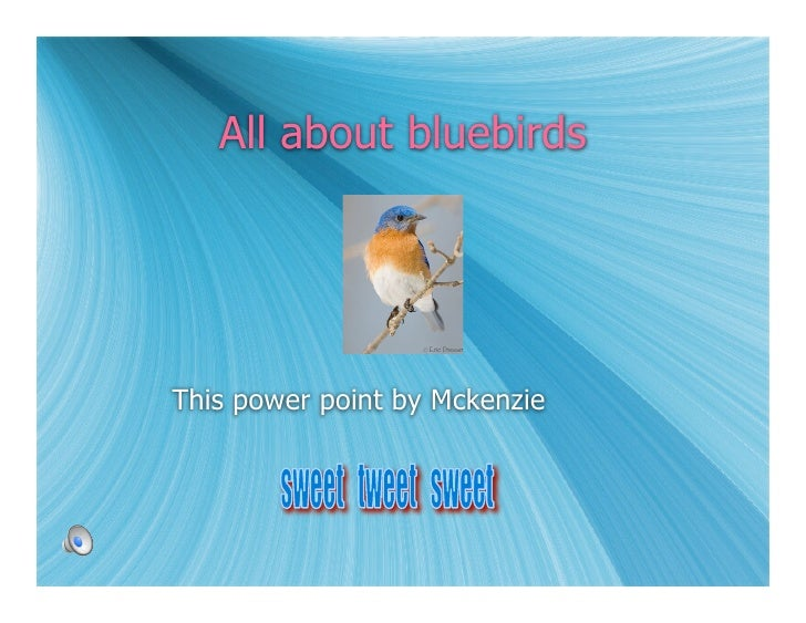 All about bluebirds     This power point by Mckenzie