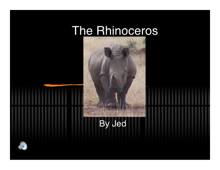 The Rhinoceros         By Jed