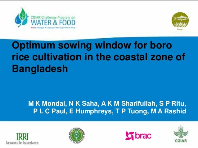 Very Best  window for boro rice cultivation in the coastal zone of Bangladesh 638 x 479 · 68 kB · jpeg