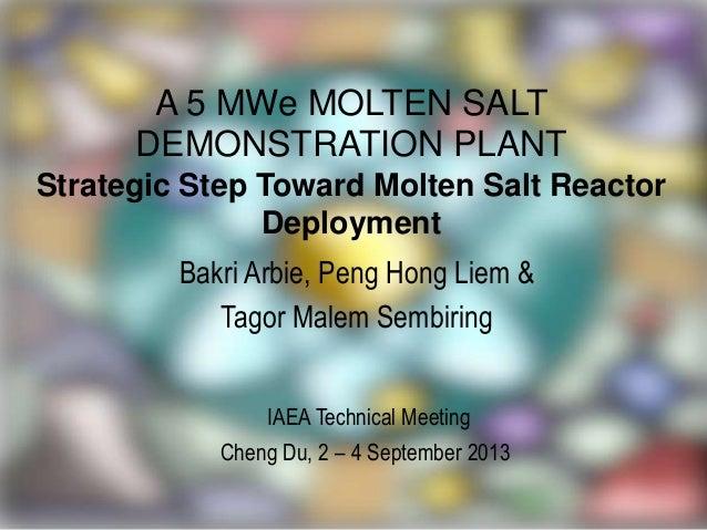 A 5 MWe MOLTEN SALT DEMONSTRATION PLANT Strategic Step Toward Molten Salt Reactor Deployment Bakri Arbie, Peng Hong Liem &...