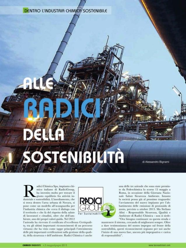 Alle radici della sostenibilità - di Alessandro Bignami