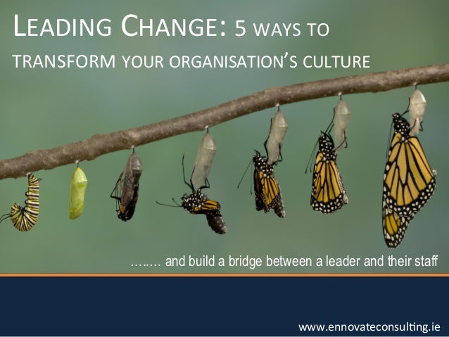 LEADING  CHANGE:  5  WAYS  TO    TRANSFORM  YOUR  ORGANISATION'S  CULTURE    …..… and build a bridge bet...