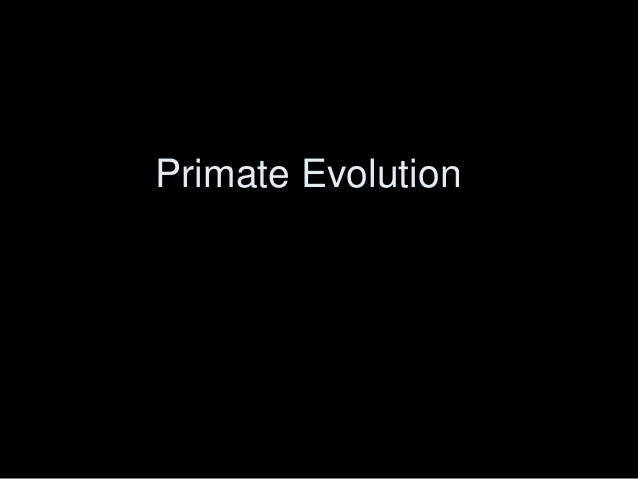 primate evolution notes View notes - 503 primate evolution notes from biology 1 at florida virtual high school 503 primate evolution primates humans, chimpanzees, gorillas, and lemurs are all examples of organisms.