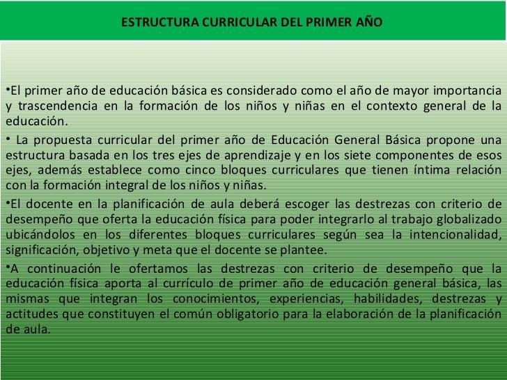 ESTRUCTURA CURRICULAR DEL PRIMER AÑO <ul><li>El primer año de educación básica es considerado como el año de mayor importa...