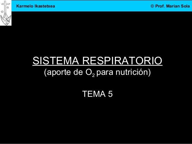 3.DBH 1 Karmelo Ikastetxea © Prof. Marian Sola SISTEMA RESPIRATORIO (aporte de O2 para nutrición) TEMA 5