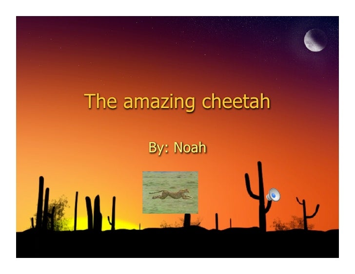 5s Cheetah