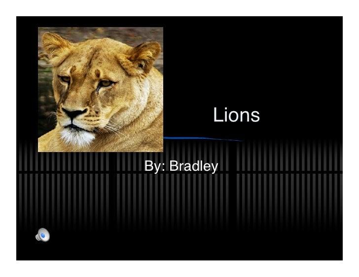 Lions  By: Bradley