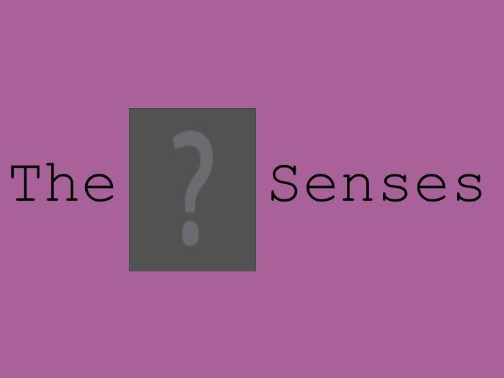 5 Senses_Margarita Serrano