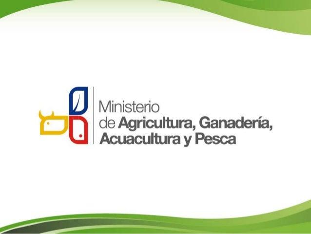 Políticas Públicas de Producción,Seguridad y Soberanía Alimentaria,Política de Desarrollo Rural ySistema de Provisión de A...