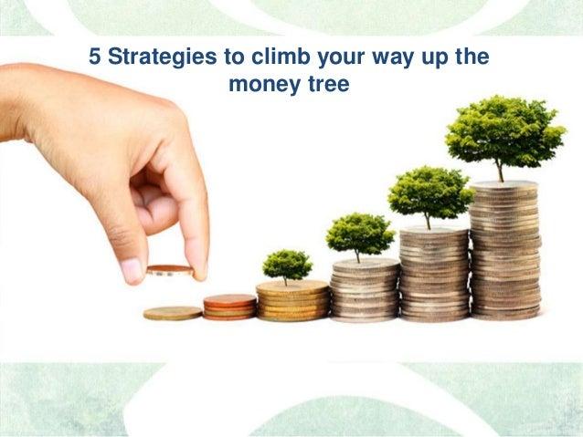 5 Strategies to climb your way up the money tree