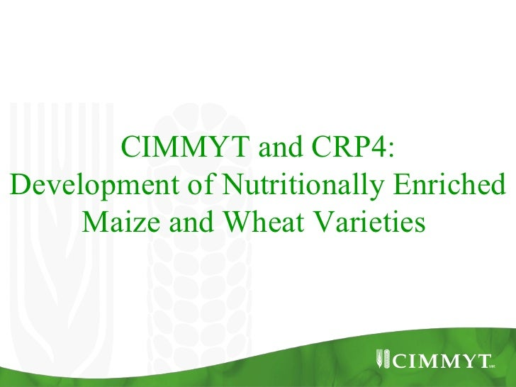 CIMMYT and CRP4:Development of Nutritionally Enriched     Maize and Wheat Varieties