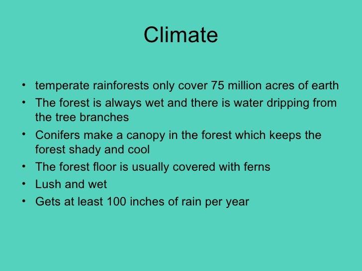 5th Period Temperate Rain Forest
