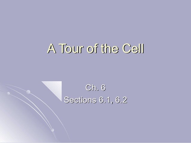 A Tour of the CellA Tour of the Cell Ch. 6Ch. 6 Sections 6.1, 6.2Sections 6.1, 6.2