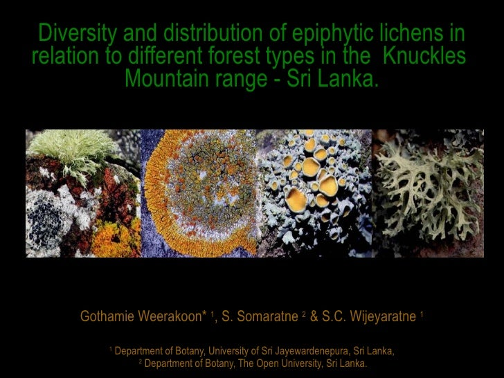 Diversity and distribution of epiphytic lichens in relation to different forest types in Knuckles Mountain range, Sri Lanka.