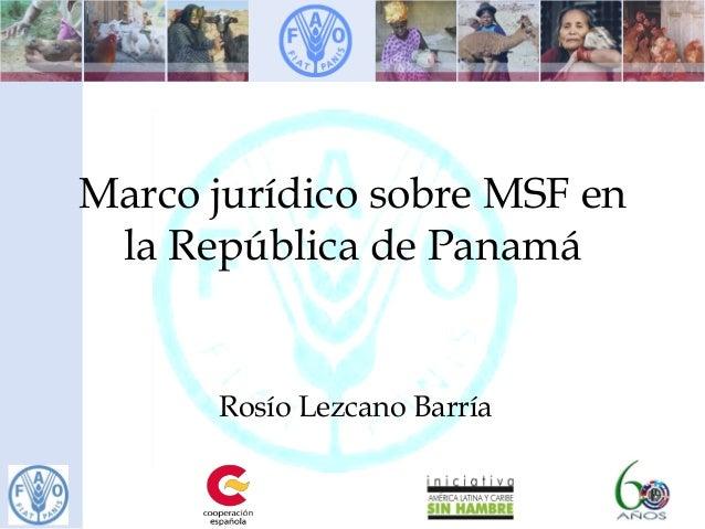 Marco jurídico sobre MSF en la República de Panamá Rosío Lezcano Barría