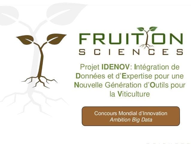Projet IDENOV: Intégration de  Données et d'Expertise pour une  Nouvelle Génération d'Outils pour  la Viticulture  Concour...