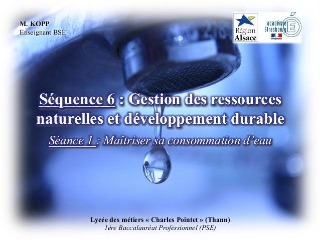 Lycée des métiers « Charles Pointet » (Thann) 1ère Baccalauréat Professionnel (PSE) Séquence 6 : Gestion des ressources na...