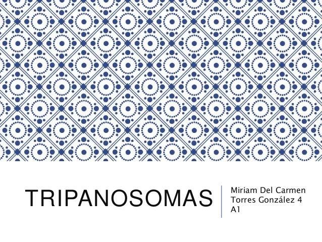TRIPANOSOMAS Miriam Del Carmen Torres González 4 A1