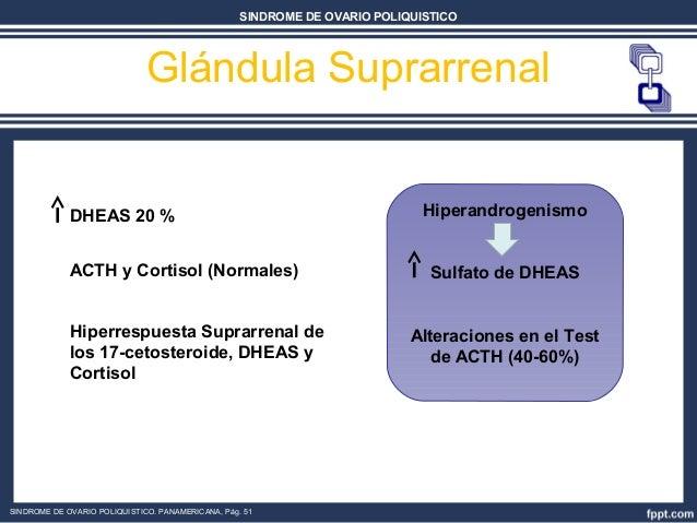 esteroidogenesis ovarica en animales