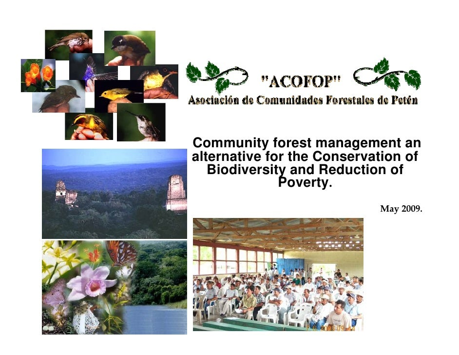 Community forest management an alternative for the Conservation of    Biodiversity and Reduction of               Poverty....