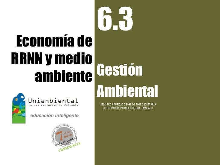 6.3 Economía deRRNN y medio    ambiente Gestión             Ambiental             REGISTRO CALIFICADO 1568 DE 2009 SECRETA...