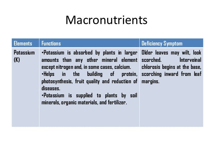the role of macronutrients The three macronutrients of protein, fat, and carbohydrates all perform essential roles in the human body macronutrients are the main components of our diet.